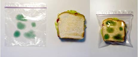 Пластиковый пакет с изображением плесени
