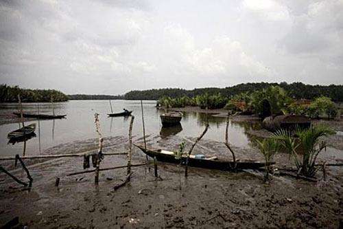 Уничтоженная экосистема нефтедобывающих районов Нигерии