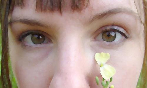 Ангельские глазки