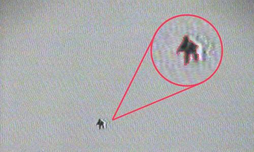 Странное существо, снятое с вертолета в мексиканской пустыне