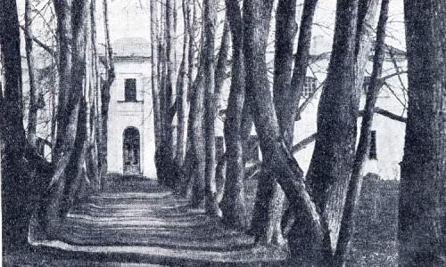 Подмосковная музей-усадьба Остафьево - липовая аллея весной. 1928 год.