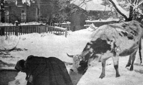 Быт советского крестьянина. 1927 год.