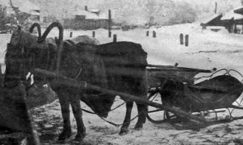 Лошади нуждаются в водопое круглый год. 1927 год.