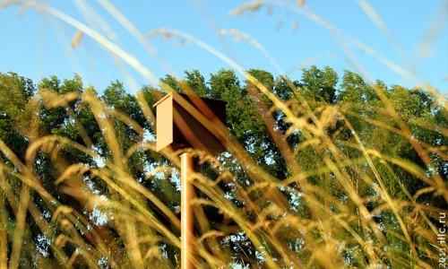 Ящик для летних писем.
