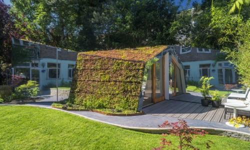 Строительство зеленых коттеджей в Амстердаме.